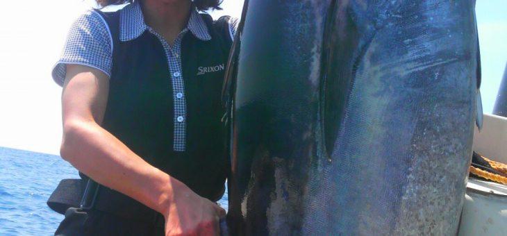 サメ付きイワシ団子
