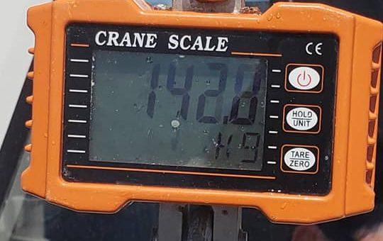 142.8キロキャッチ